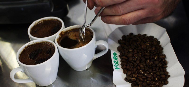 Cupping – A kávékóstolás művészete