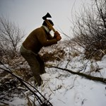 Fatolvajokra vadászó rendőrök razziáztak Borsodban