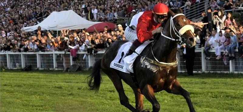 Lóversenypénzre feni a fogát az állam