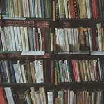 Kétperces irodalmi kvíz nem csak érettségizőknek: jól ismeritek Adyt?