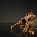Meztelen táncosoknak örülhetnek a budaiak