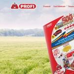 Eladták a román Profi láncot majdnem kilencszeres áron