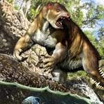 7 tonnás harapás nyomára bukkantak egy 13 millió éves lajhárfosszílián