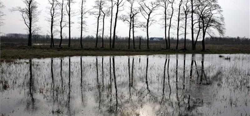 Belvíz fenyegeti az alföldi ingatlanokat