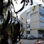 Újabb változás jön: egy év után búcsút inthetünk a Pallasz Athéné Egyetemnek