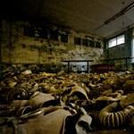 A rádiós, aki először bemondatta a csernobili katasztrófa hírét – videó
