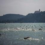 Hogyan hat a klímaváltozás a vízminőségre? - kutatást folytatnak a Balatonnál
