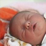 Vanda lett az év első babája