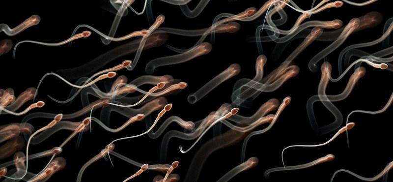 Elkészült a férfiaknak szánt fogamzásgátló, 13 évig véd