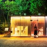 Átlátszó nyilvános vécéket állítottak fel Tokióban