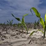 Számszerűsítették a klímaváltozás gazdasági hatásait: Norvégia jól járt, Nigéria rosszul