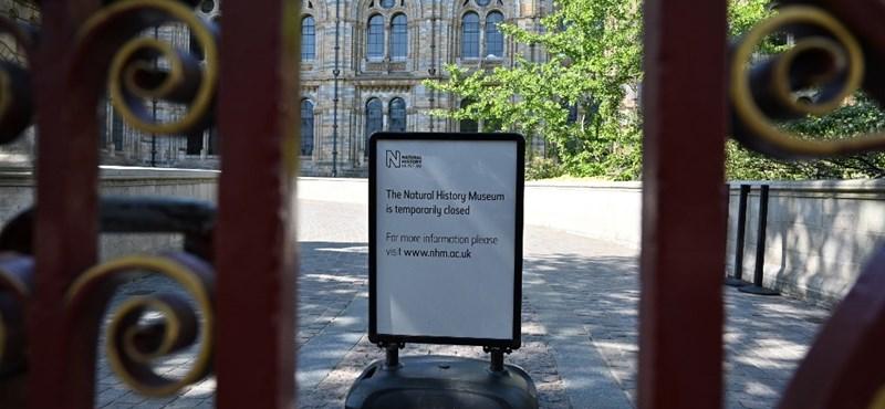 Csődbe viheti a múzeumokat a koronavírus