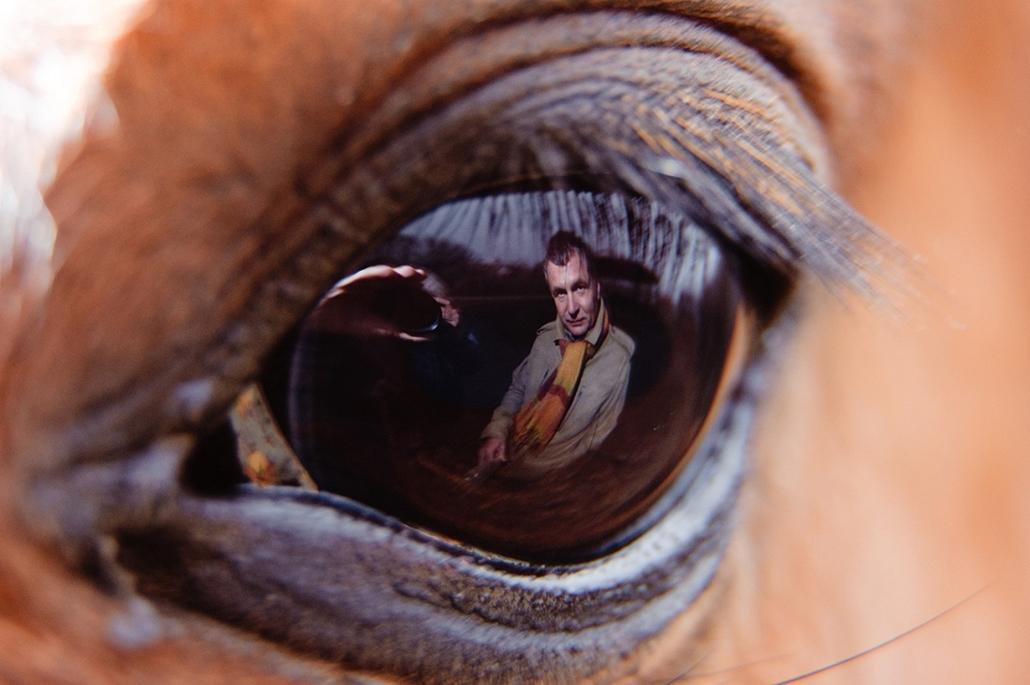 Sajtófotó 2011 - Nagyítás-fotógaléria - Emberábrázolás-portré - egyedi - 1. helyezett: Szemben