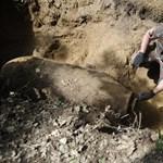 Bomba miatt ürítették ki az ELTE egyik épületét