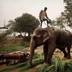 Extrém családi túrák – egzotikus helyek gyerekneveléshez