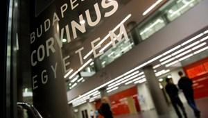 QS-rangsor: újabb tematikus listán két magyarországi egyetem