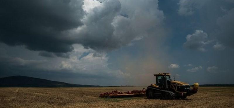 Törlik az elhunyt vagy ismeretlen földtulajdonosokat a nyilvántartásból