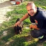 Macskakergetés közben kútba esett egy kutya, a tűzoltók mentették ki