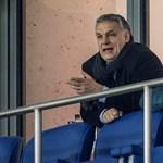Egyetlen játékos sem került idén az utánpótlásból a felcsúti fociakadémia felnőttcsapatába