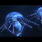 Videó: jönnek a víz alatti drónok