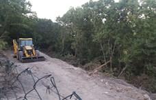 Percenként 30 focipályányi erdőt irtottak ki tavaly