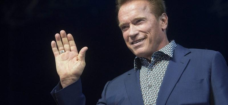 Van azért üzlet, ahová beengedik Schwarzeneggert – fotók