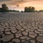 Veszélybe sodorjuk a Földet: drámaian csökken világszerte a vizes területek nagysága