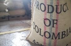 Jobb lesz átszokni az 1500 méter felett termelt kávéra