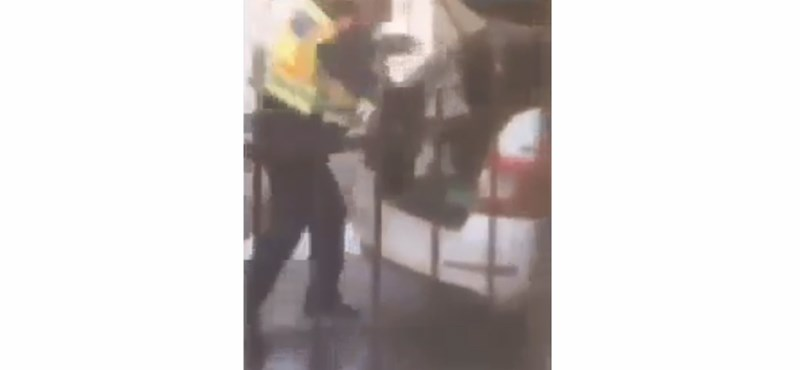 Felfüggesztették a rendőrt, aki verte és csomagtartójába dobta a kiskutyát