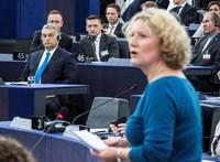 A kormánypropaganda miatt nem mer Magyarországra jönni Judith Sargentini
