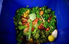 Egy friss kutatás szerint az élelmiszerek 20 százaléka végzi a kukában