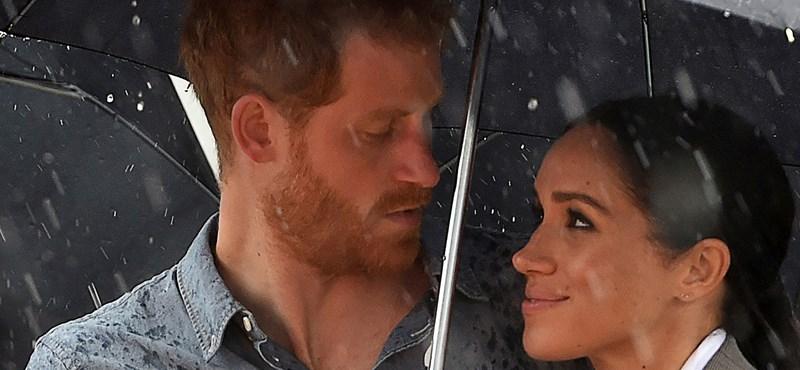 Miből élhet meg Harry herceg és felesége, ha megpróbál dolgozni?