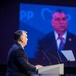 Megvan, mit vár Orbán Viktortól a Fidesz pártcsaládja CEU-ügyben
