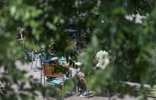 Budapest főtájépítésze szerint az Elmű egy fagyilkos cég
