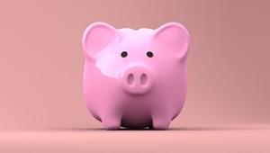 Ösztöndíjra pályáznátok? Mutatjuk, hogy mire érdemes figyelni