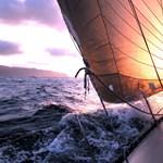 Jó széllel amerikai partokra