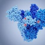 Pécsi virológusok: Olyanoknál azonosították a koronavírus brit mutációját, akik nem utaztak