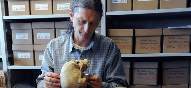 """""""Szorongva várjuk a következő periódust"""" – nem lopta be magát a dolgozók szívébe a Természettudományi Múzeum új főigazgatója"""