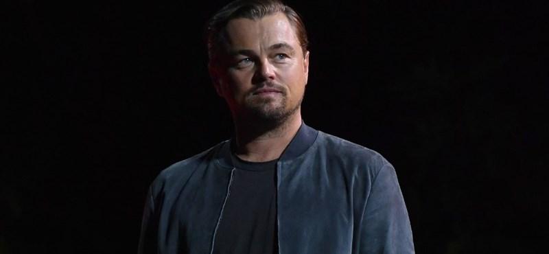 Leonardo DiCaprio hárommillió dollárt ajánlott fel a tűzoltásra