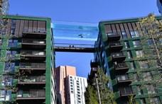 Van egy lakópark Londonban, ahol a házak tetejét egy hosszú úszómedence köti össze