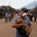 Nőtt a guatemalai vulkánkitörés halálos áldozatainak száma