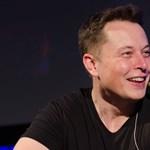 Bárki jelentkezhet: 100 millió dollárt ajánlott fel Elon Musk, hogy kivonjuk a légkörből a szén-dioxidot