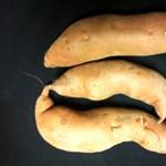 Mire jó az édeskrumpli? – recept