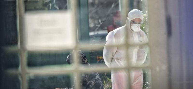 A Magyar Orvosi Kamara titkára szerint itt az ideje farkast kiáltani