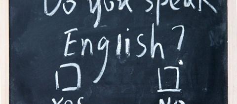 A PSZ is támogatja a kötelező nyelvvizsga eltörlését - várják a kormány döntését