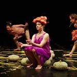Öt éve műsoron A nagy füzet a Szkéné Színházban