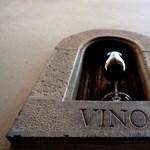 A túlélés zálogai lettek a borablakok Firenzében