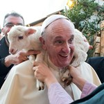 Fotó: bárányt ültettek Ferenc pápa nyakába