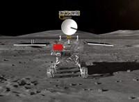 Ezt a versenyt is a kínaiak nyerték: kihajtottak az első magok a Holdon