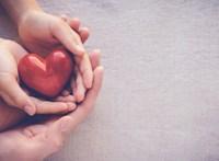 Valóban meg tud szakadni? – Tények, amiket kevesen tudnak a szívről